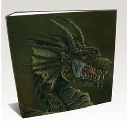 ALBUM 3 ANILLAS HARDBACK DRAGON SHIELD BROWN