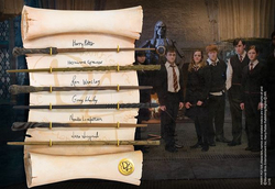 VARITAS HARRY POTTER EJERCITO DE DUMBLEDORE