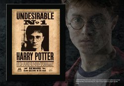 HARRY POTTER UNDESIRABLE Nº1 PICTURE 22X31X1.7 CM