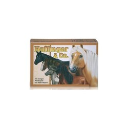 HAFLINGER & CO CARD GAME