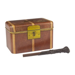HARRY POTTER SUITCASE BANK