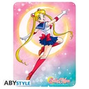 PLACA DE METAL SAILOR MOON 28X38
